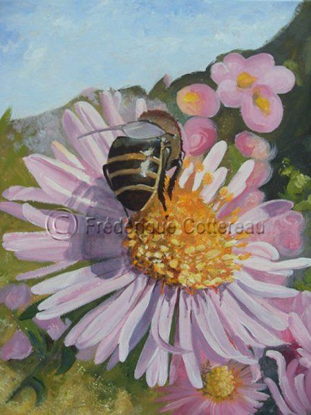 abeille-sur-aster-640x853